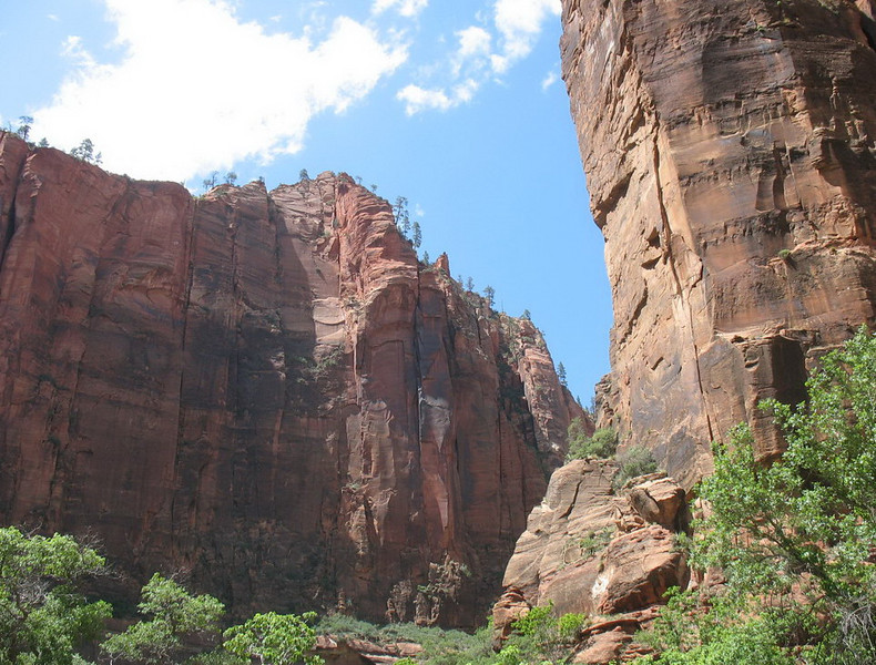 Zion was the only park in which we were at the bottom looking up and the grandeur of the steep cliffs was awesome.
