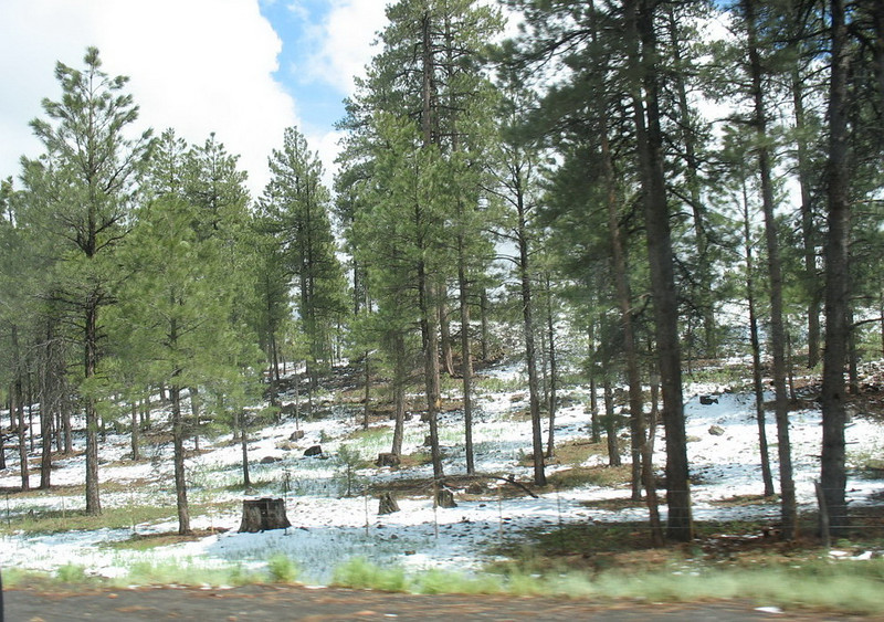 It was May 23, but Flagstaff was hit by some unseasonable weather. This is what it looked like as we approached.