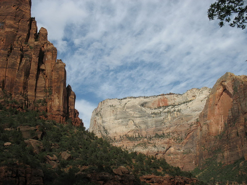 "Zion is best known for its ""White Cliffs""/ They are an escarpment of Navajo Sandstone that is found throughout the region."