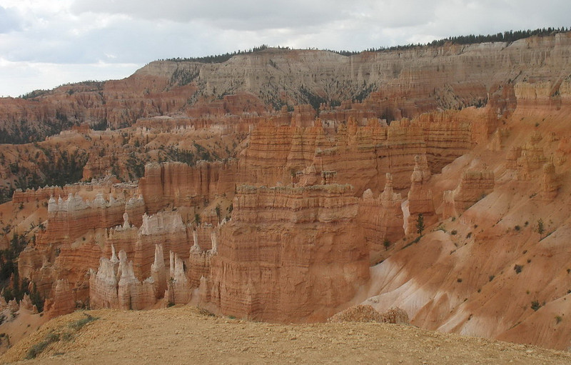 Some of the vast array of Hoodoos at Bryce Canyon.
