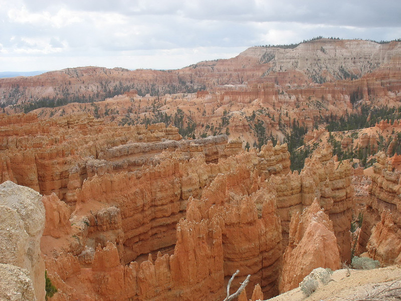 Outcrops throughout Bryce Canyon were formed between 63 and 40 million years ago. Modern erosion of the Clarion Formation gives this area is unique characteristics.
