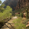Utah - Zion National Park, Zion Valley