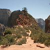 Utah - Zion National Park, descending from Angel's Landing