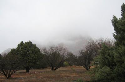 Sedona AZ Feb 2010