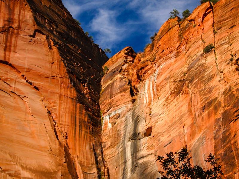 Zion National Park (2009)