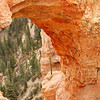 Bryce Canyon : through the arch