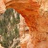 Bryce Canyon : through the arch