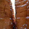Wall Street, Bryce Canyon National Park.
