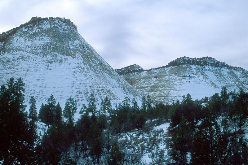 Checkerboard Mesa, Zion National Park.