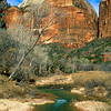 Castle Dome, Zion National Park.