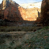 Canyon wall, Zion National Park.