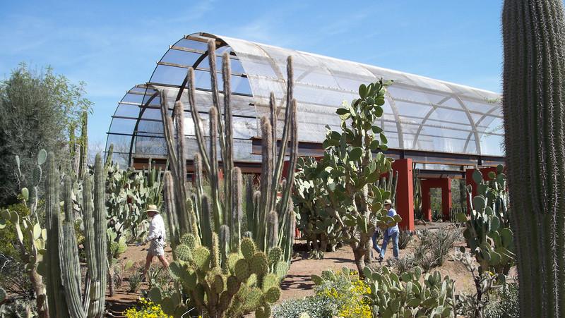 Desert Botanical Gardens, Phoenix, AZ March, 2008