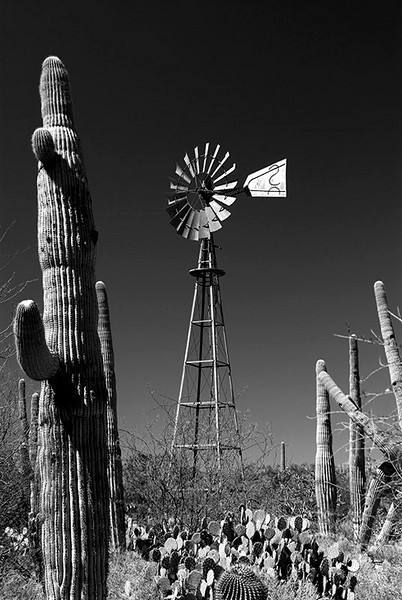Somewhere in the desert southeast of Tucson, Arizona.