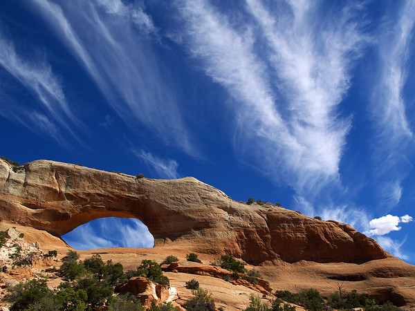 Southwestern U.S. Trip-2006