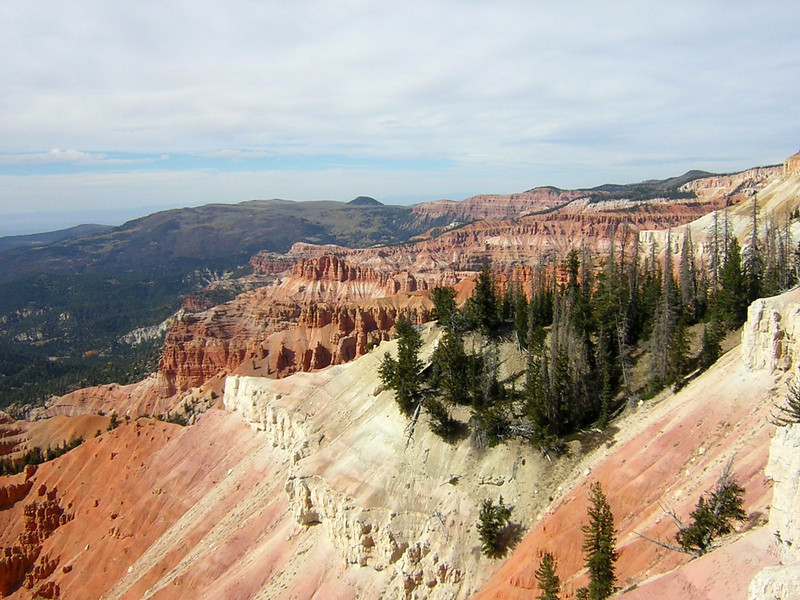 Cedar Breaks National Monument, UT. Image Copyright 2004 by DJB.  All Rights Reserved.