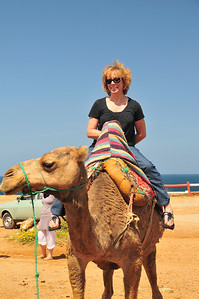 Sherry tries her hand at the Camel
