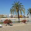 Along the river Guadalquivir
