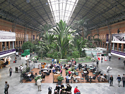 In Madrid -- train terminal converted into a mall / terrarium.