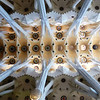 Barcelona - one of the ornate ceilings in the  Sagrada Familia.