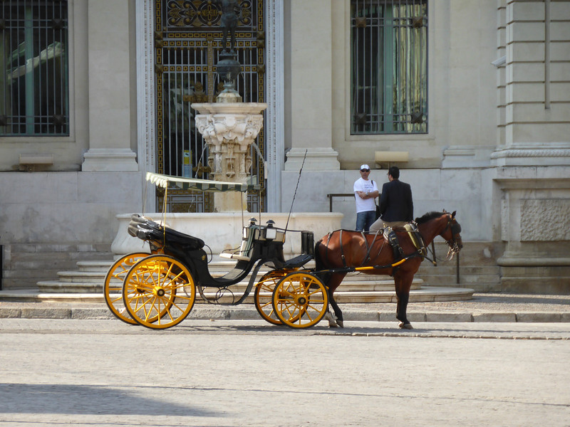 Seville - one of the many Horse & Buggy tours, waiting for a customer.