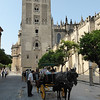 Seville - some of the many Horse & Buggy tours.