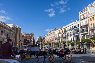 An artist drawing the horse-drawn carriages in the Plaza Nueva.