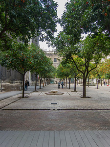 The Patio de los Naranjos (Patio of the Oranges) which is part of the Seville Cathedral, and formerly of the Almohad mosque.
