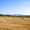 IMG_1365 - 2012-08-02 at 02-12-53
