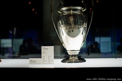 the Champions League Trophy (dunno if it has left the museum after chelsea's victory