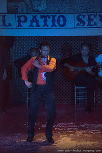 flamenco - pushing the low light limits of the d800. On the whole, the d800 performed much better than the dancers.