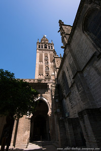 view of the tower from the cathedral courtyard