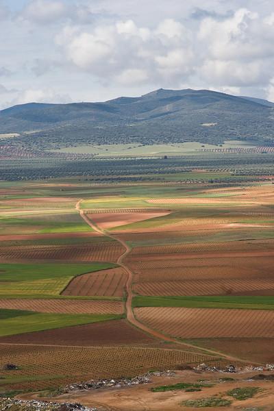 Consuegra (Don Quixote country) landscape