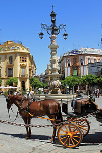 THe Plaza Virgen de los Reyes is usually lined with with horse-drawn carriages offering rides to the tourists.