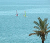 Windsurfers off coast of Madeira