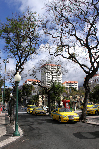 Parked taxis near the Avenida Do Infante Funchal Madeira