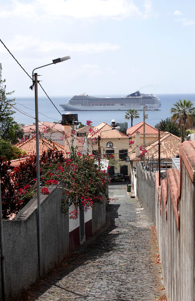 Suburbs of Funchal Madeira and MSC Cruise Liner