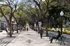 Pedestrian boulevard Avenida Arriaga Funchal Madeira