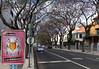 View along the Avenida Do Infante Funchal Madeira