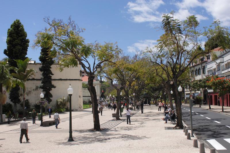 View along the Avenida Arriaga Funchal Madeira