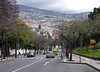 Avenida Do Infante Funchal Madeira