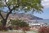 Funchal Madeira cityscape view from Parque de Santa Catarina