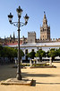 La Giralda Bell Tower of Seville Cathedral view from Plaza Patio de Banderas