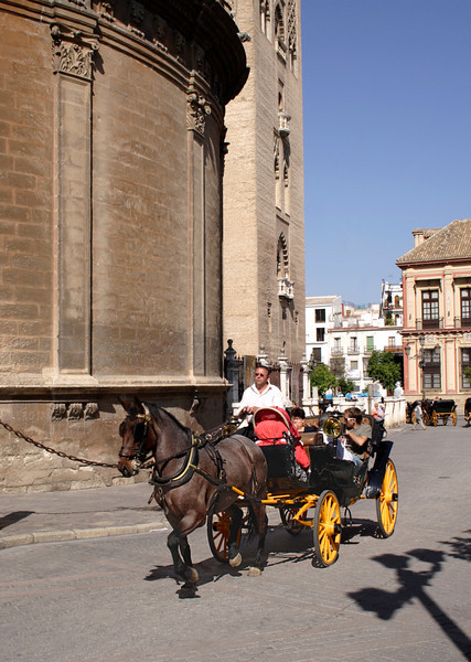 Horse and carriage passing Seville cathedral