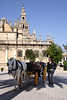 Horse and carriage near Seville Cathedral