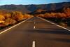 SPA - Road in Almeria Badlands, Andalucia -IMG_8807sm
