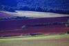 SPA-Navarra hills IMG_0127