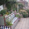 Bishop's Palace garden