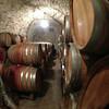 Barrels of wine!