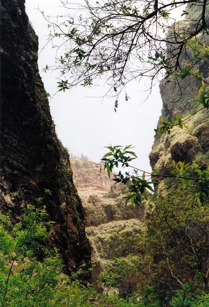 Barranco del infierno en Tenerife