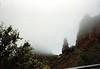 Nieblas en las montañas de Gran Canaria